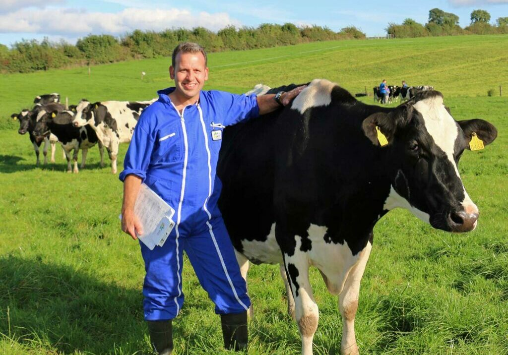 Kaul man in blue jumpsuit with black and white cow in field